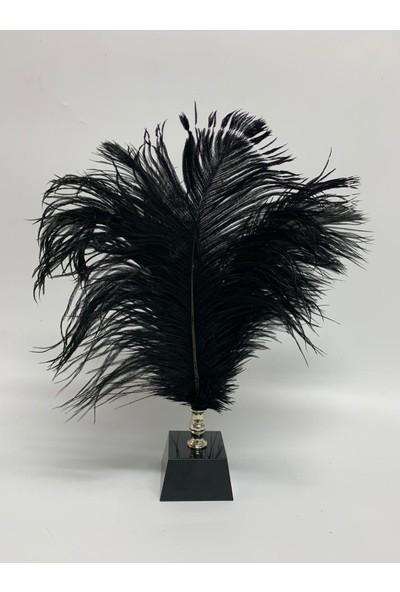 Ev Dekorasyon Siyah Tüylü Siyah Tüylük Gümüş