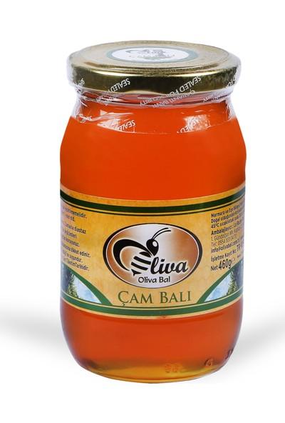 Oliva Bal Çam Balı 460 gr