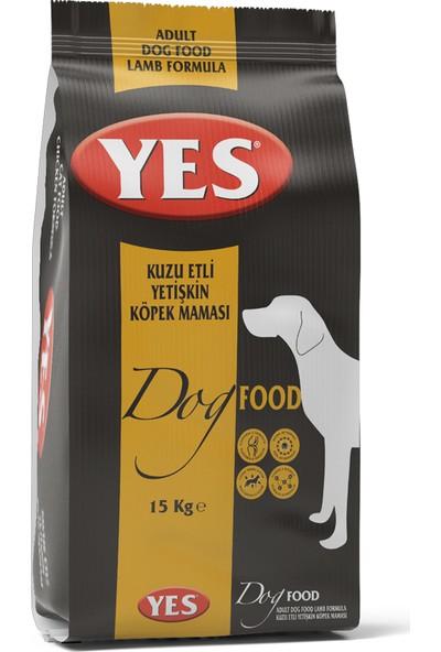 Yes Kuzu Etli Yetişkin Köpek Maması 15 kg