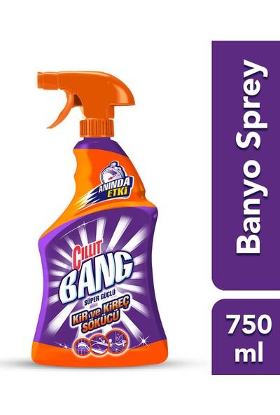 Cillit Bang Banyo ve Mutfak Temizleyici Yağ Çözücü & Kireç Sökücü Sprey 2'li Set (2x750 ml)