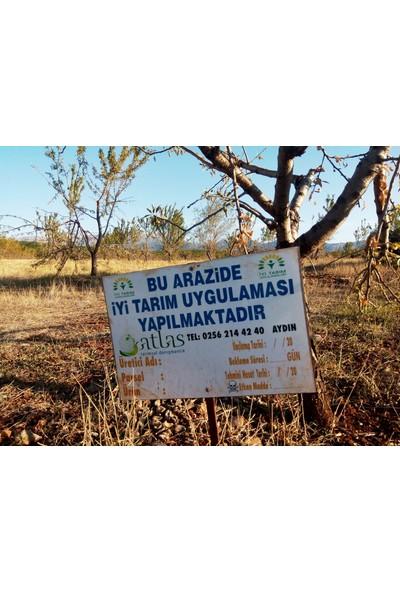 Karabay Organik Badem
