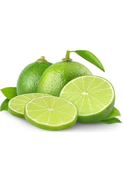Mavi Akdeniz Yeşil Limon