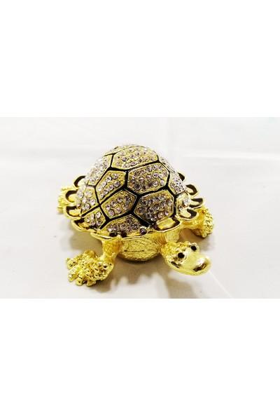 Keskin Taşlı Kaplumbağa