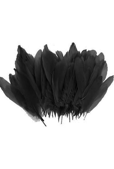 Kidspartim 100'lü Siyah Tüy