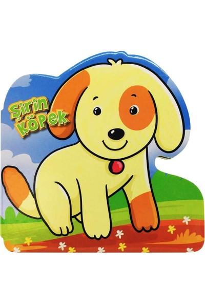 Şirin Köpek - Ömer Canbir