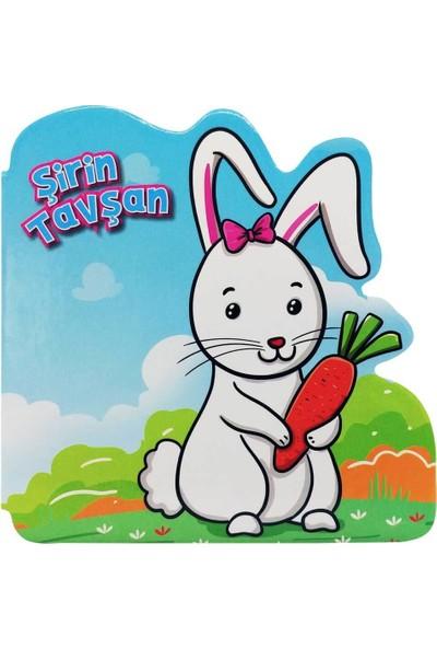 Şirin Tavşan - Ömer Canbir