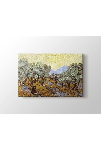 2645 İstanbul Vincent van Gogh - Olive Trees Tablo