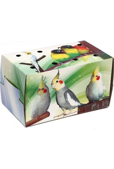 Büyük Kuş Kutusu 50'li