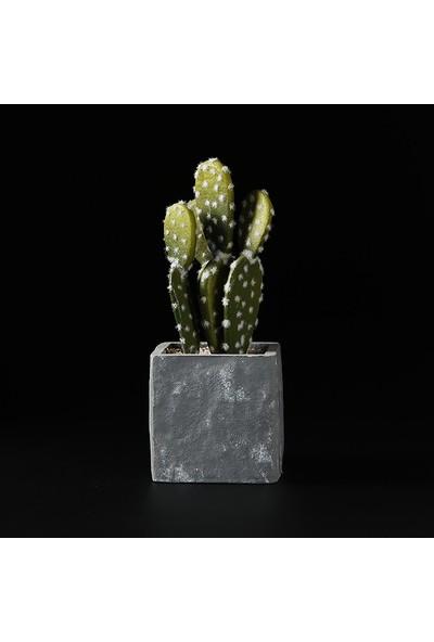 New Vision Plastik Profesyonel Stüdyo Fotoğraf Fonu Siyah ve Beyaz Renk