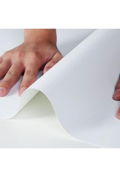 New Vision Plastik Profesyonel Stüdyo Fotoğraf Fonu 1 mm Beyaz