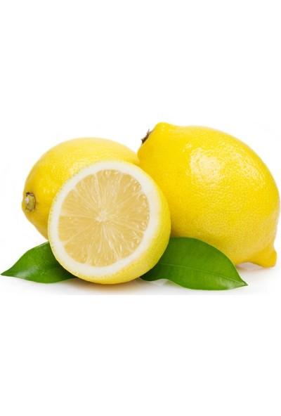 Karadeniz Fidancılık Yediveren Limon Fidanı Tüplü 100 - 120 cm