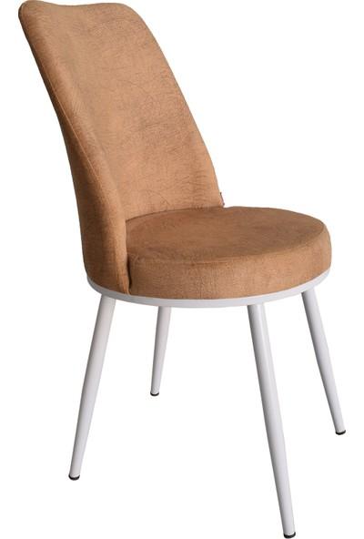 Armens Gold Mutfak - Bahçe Cafe - Restorant Sandalyesi (Beyaz Ayak)