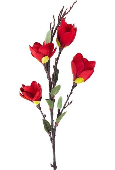 Çiçekmisin Uzun Dal Badem Gülü