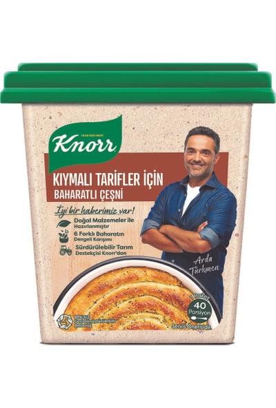 Knorr Kıymalı Tarifler İçin Baharatlı Çeşni 110 gr