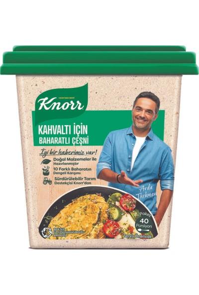 Knorr Kahvaltı İçin Baharatlı Çeşni 75 gr