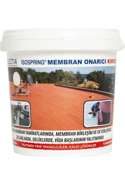 Eclectia Isospring Membran Onarıcı Kırmızı 1 kg