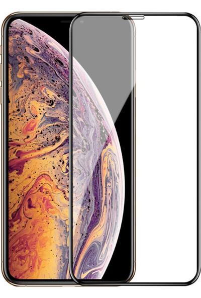 Enes GSM Apple iPhone X/XS 10D Ekran Koruyucu