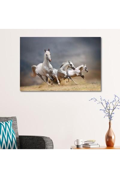 Çerçevelet Koşan Kır Atlar 35 x 22 cm