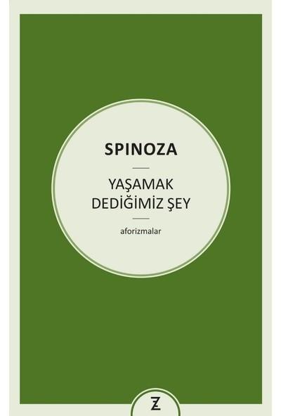 Yaşamak Dediğimiz Şey - Spinoza