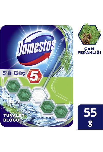 Domestos 5'li Güç Çam Ferahlığı Wc Blok 55 GR