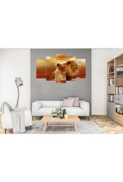 Hediye Kapında 5 Parçalı Dekoratif Tablo Aslanlar