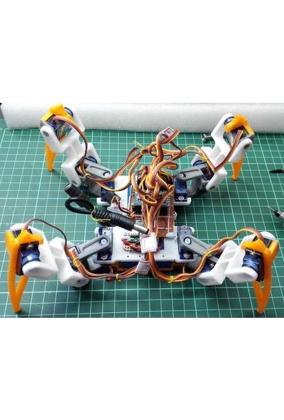 Alpgen Robotics Örümcek Robot