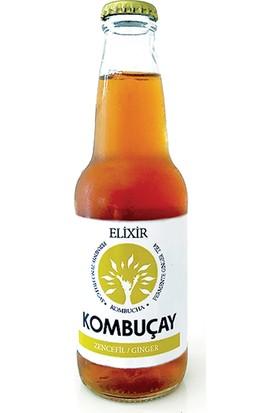 Elixir Kombuçay Ginger 250 ml 12'li