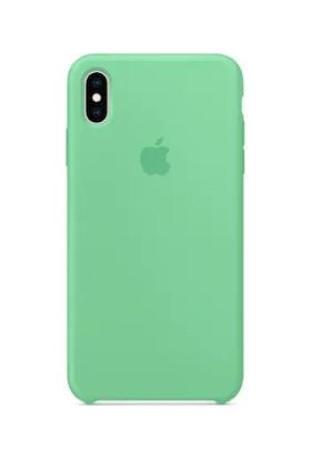 Gezegenaksesuar Apple iPhone X / XS Lansman Kılıf - Yeşil
