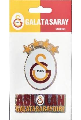 Hakan Galatasaray Sticker TFS-14101 2'li