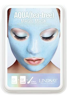 Lındsay Deluxe Aqua Toz Maske 65GR