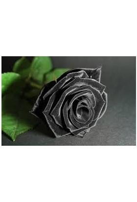 Siyah Gül Karagül Kolonyası Pırlanta Cam Şişe Modeli 200 ml