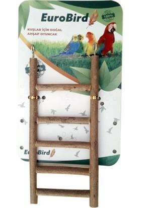 Eurobird 5 Basamaklı Doğal Ahşap Merdiven