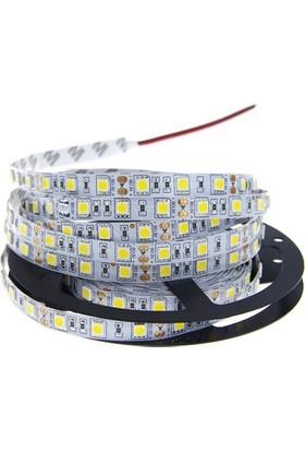 Iç Mekan 3 Çip Şerit LED 5 mt - Mavi