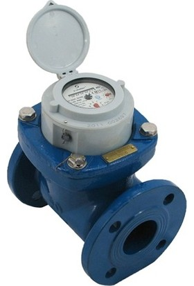 S-Meter WP-SDC DN50 Soğuk Su Sayacı Pulser Yok