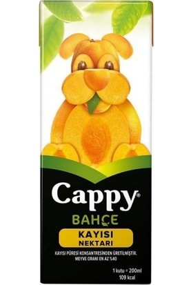 Cappy Meyve Suyu Kayısı 200 ml 12