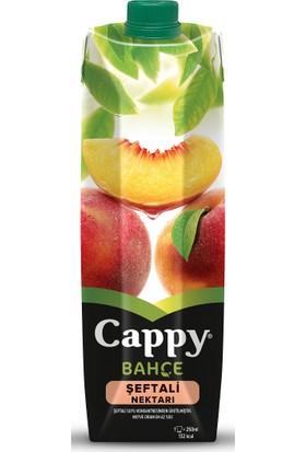 Cappy Meyve Suyu Şeftali 1 Lt 6
