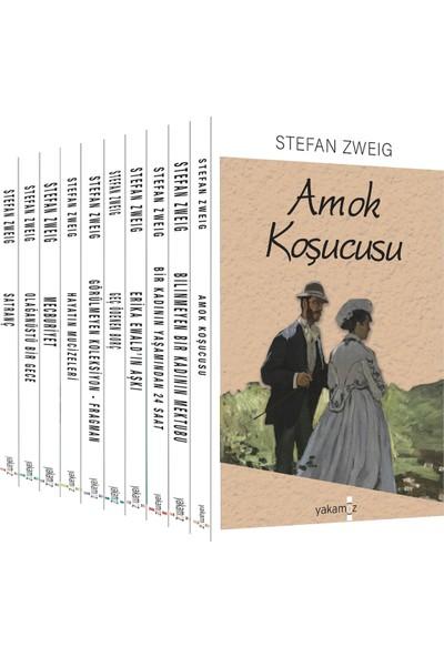 Zweig Seti (10 Kitap) - Stefan Zweig