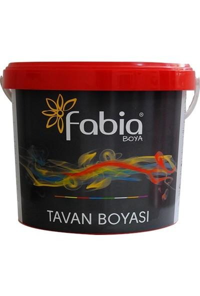 Fabia Boya Tavan Boyası TSE - 20 Kg