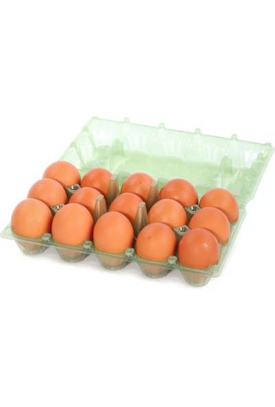 Viyolpazarı 15 'li Plastik Yeşil Yumurta Viyolü 200 Adet