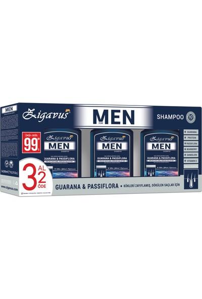Zigavus Men Şampuan 300 ml 3 Al 2 Öde