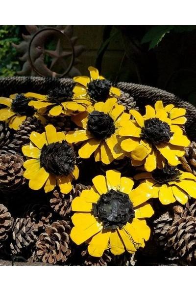 Ebruli Sarı Çiçek Kozalak 10 Adet ve Doğal Kozalak 10 Adet
