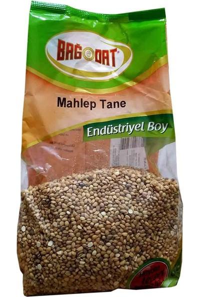 Bağdat Mahlep Tane 1 Kg Pkt