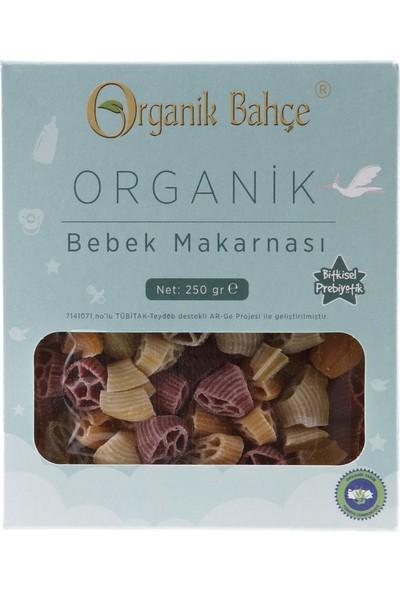 Organik Bahçe Organik Bebek Makarnası 250 gr