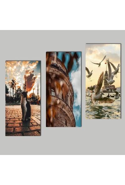 Kanvas Home Duvar Tasarım KMK3 3638 3 Parçalı Mdf Tablo 30x20cm