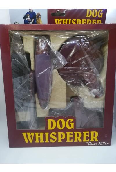 Dog Whisperer 4'lü Köpek Duş Bakım Seti