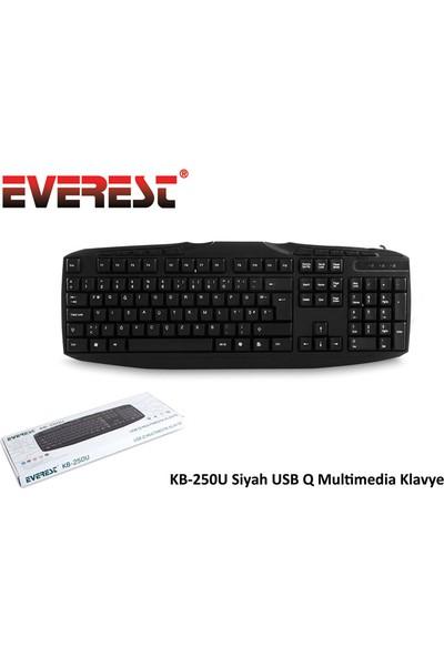 Everest Kb-250U Siyah Usb Multi Media Q Klavye