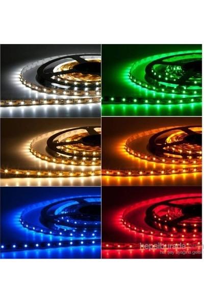 Seldur Üç Çipli Iç Mekan Şerit LED 5050 IP20 5 m