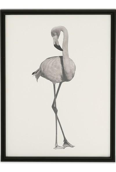Glam Bird Tablo Siyah 50 x 70 cm