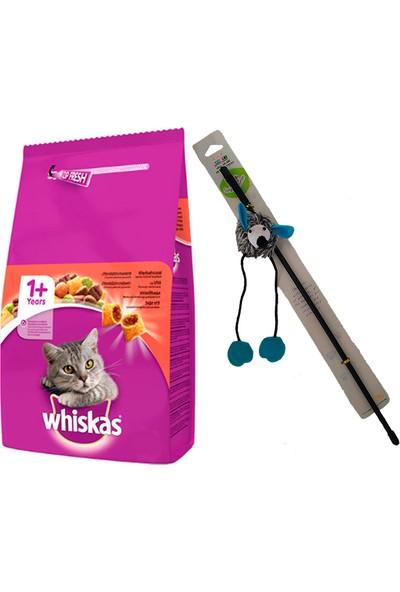 Whiskas Adult Yetişkin Sığır Etli Beef Kedi Maması 1,4 kg + Sesli Fareli Kedi Oltası