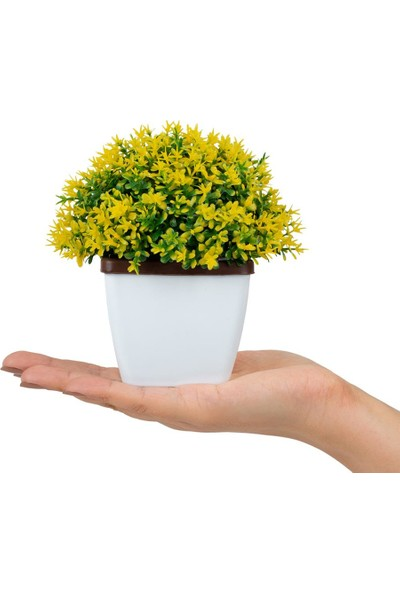 Çiçekmisin Saksıda Renkli Pıtırcık Yapay Çiçek